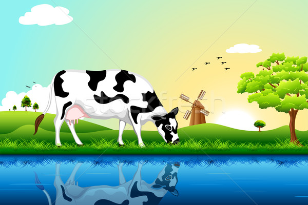 Grazing Cow Stock photo © vectomart