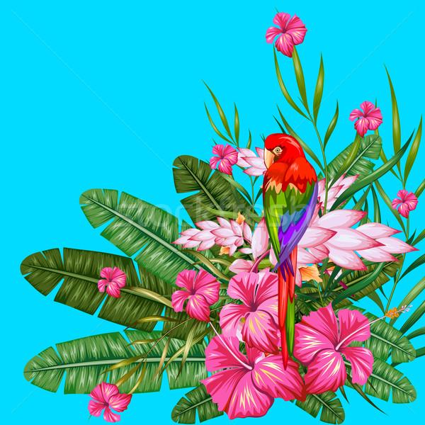 Egzotik tropikal örnek renkli çiçek bahar Stok fotoğraf © vectomart
