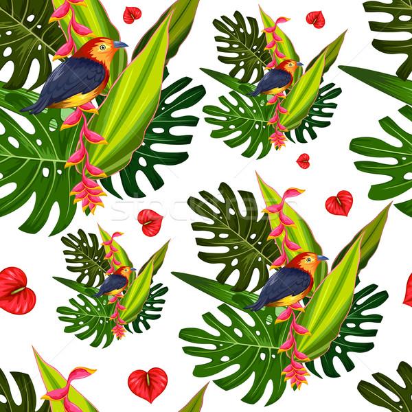 Exótico flor tropical colorido pássaro ilustração Foto stock © vectomart