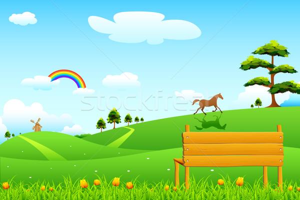 Campagne scène rurale illustration parc banc herbe Photo stock © vectomart