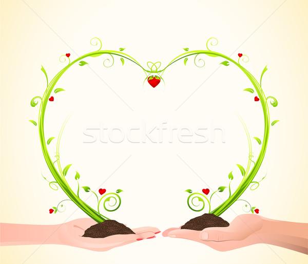 Growing Love Stock photo © vectomart