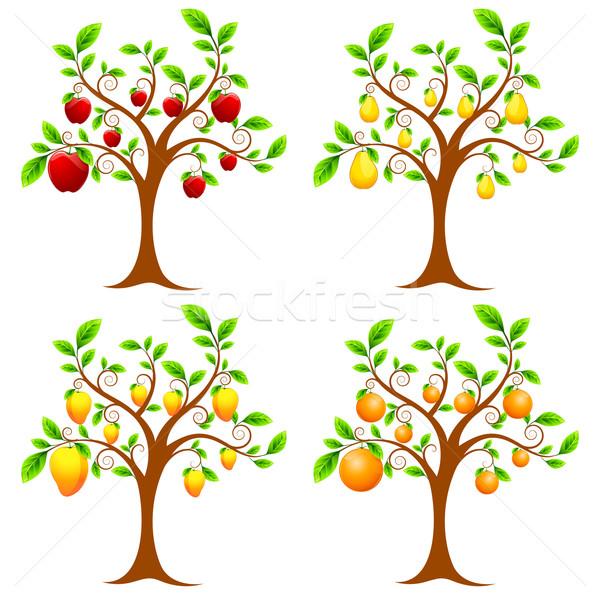 Fruit Tree Stock photo © vectomart