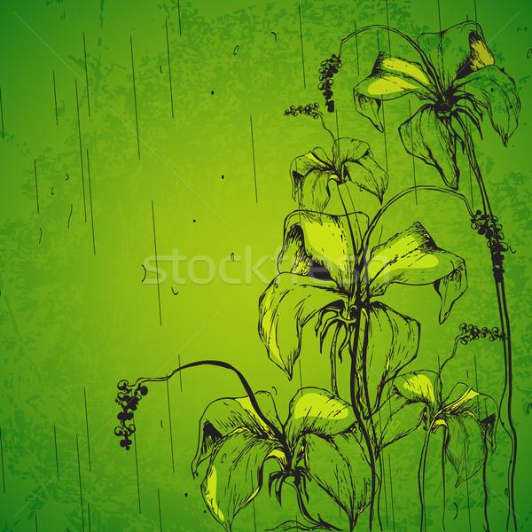 Grungy Retro Flower Stock photo © vectomart