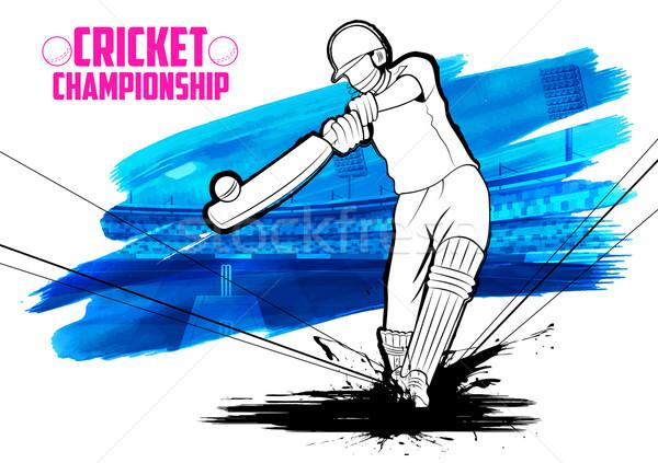 Jogar críquete campeonato ilustração fundo esportes Foto stock © vectomart