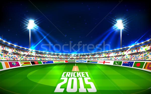 Stadion krikett mutat zászlók országok illusztráció Stock fotó © vectomart