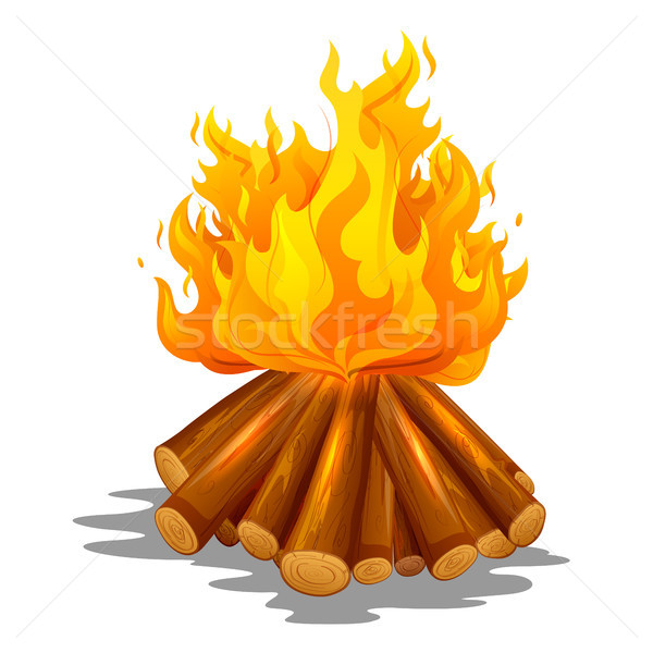 Blazing bonfire inferno fire on wood for outdoor camping or Lohri celebration Stock photo © vectomart
