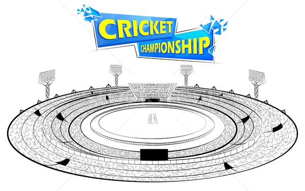 Stadion cricket toonhoogte wedstrijd illustratie sport Stockfoto © vectomart