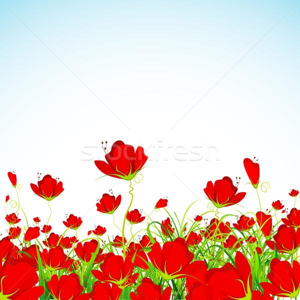 Flor jardín frescos belleza arte verano Foto stock © vectomart