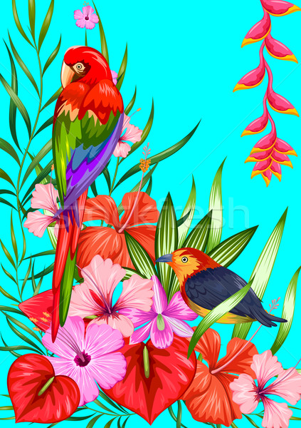 Exotic Tropical Background Stock photo © vectomart