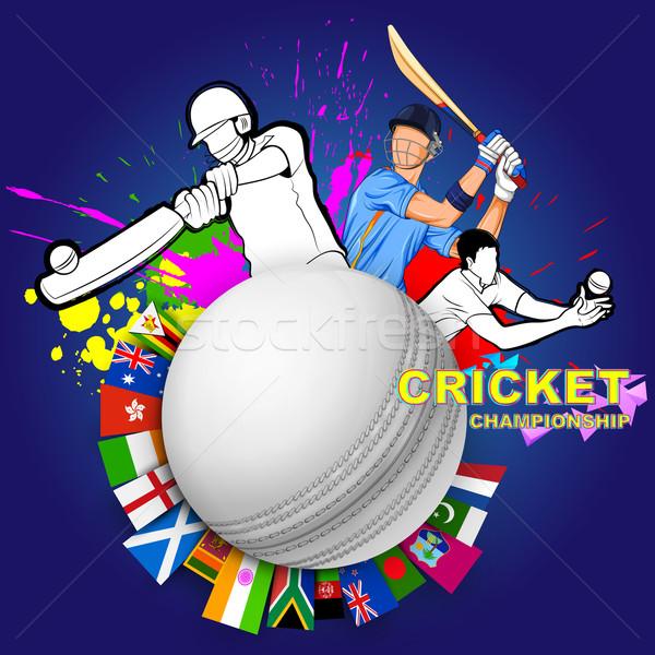 Jugando cricket campeonato ilustración hombre deportes Foto stock © vectomart