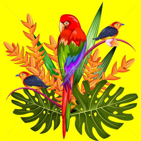 Exotique tropicales illustration coloré fleur printemps Photo stock © vectomart