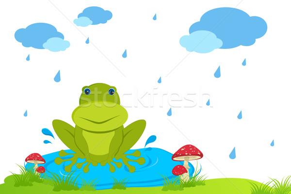 rog in Rainy Day Stock photo © vectomart