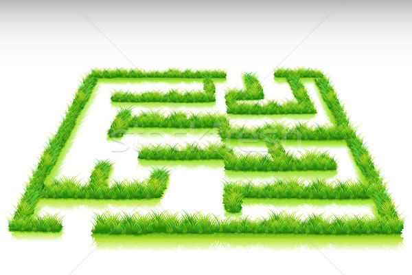Grass Maze Stock photo © vectomart
