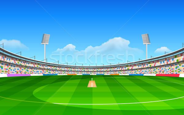 Estádio críquete ilustração grama esportes Foto stock © vectomart