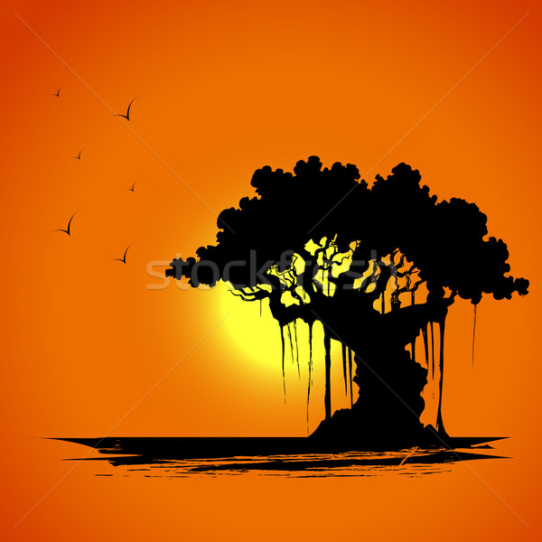 Tree on Sunset View Stock photo © vectomart