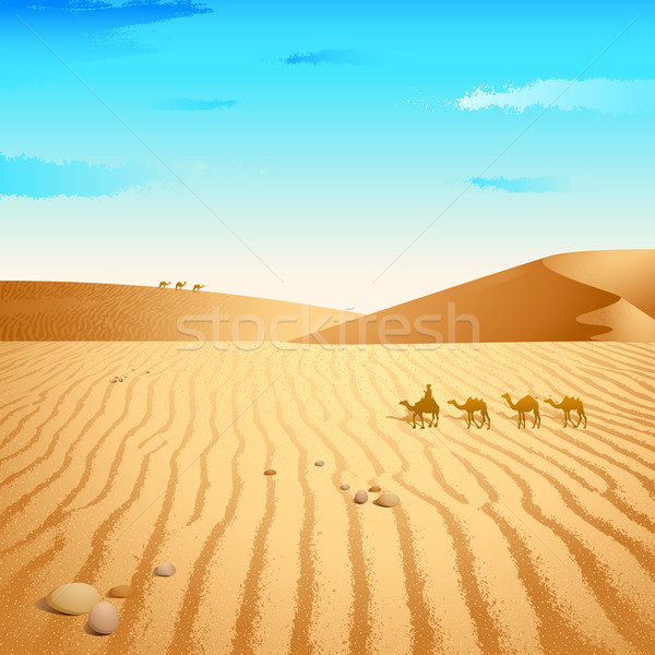 Camel in Desert Stock photo © vectomart