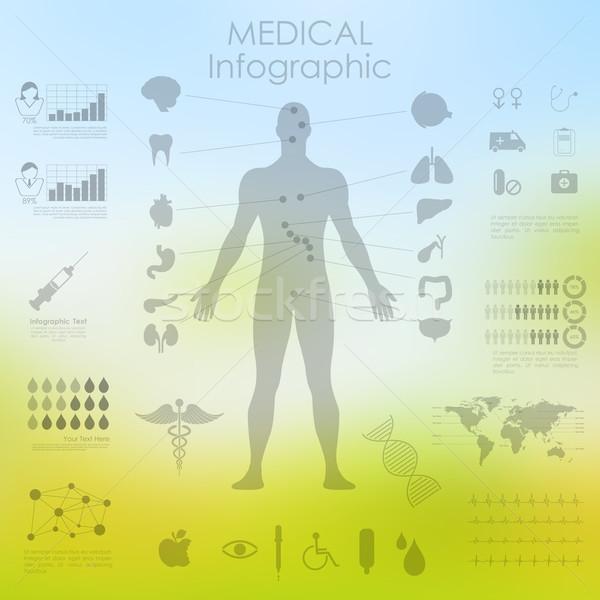 医療 医療 インフォグラフィック 実例 人体解剖学 中心 ストックフォト © vectomart