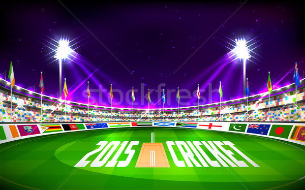 Stadium of cricket showing flags of participating countries Stock photo © vectomart