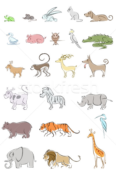 Set of Animal Stock photo © vectomart