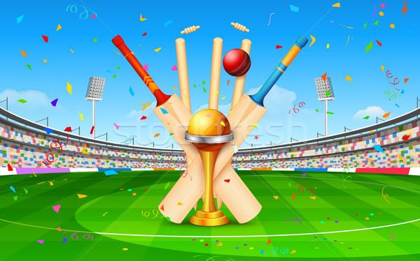 Stade cricket bat balle trophée illustration Photo stock © vectomart