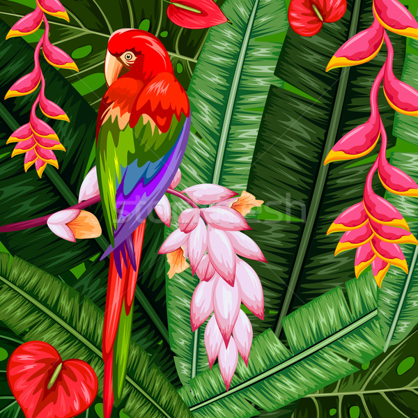 Exotique tropicales illustration coloré fleur printemps Photo stock © vectomart