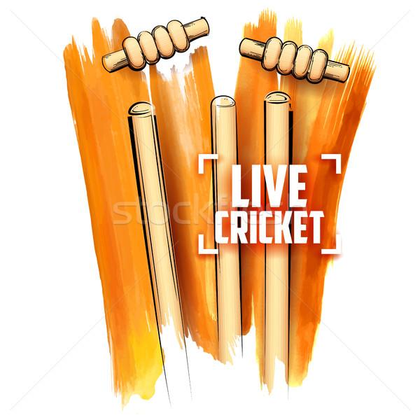 Cricket borgtocht abstract sport team Stockfoto © vectomart