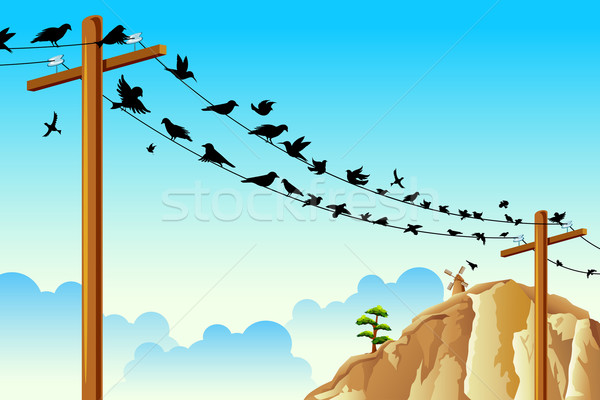 Birds sitting on Wire Stock photo © vectomart