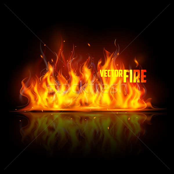 Realistic Burning Fire Flame Stock photo © vectomart