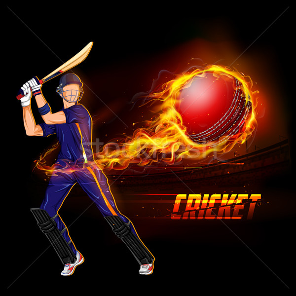 Jugando cricket campeonato ilustración ardiente pelota Foto stock © vectomart