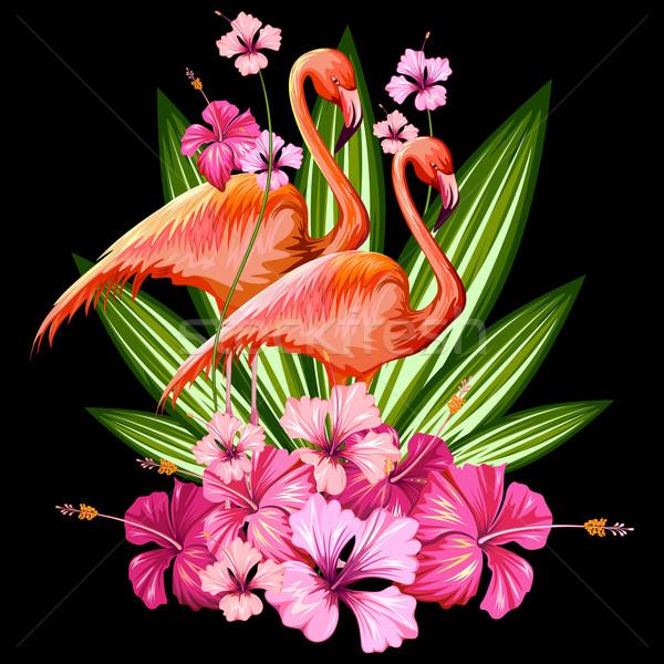 Exotique tropicales illustration Flamingo fleur printemps Photo stock © vectomart