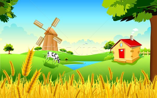 Altın buğday çiftlik örnek manzara Stok fotoğraf © vectomart