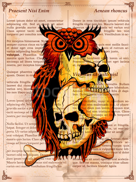 Stílus koszos koponya nyomtatott retro illusztráció Stock fotó © vectomart