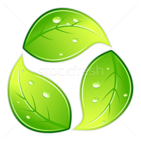 Leafy Recycle Symbol Stock photo © vectomart