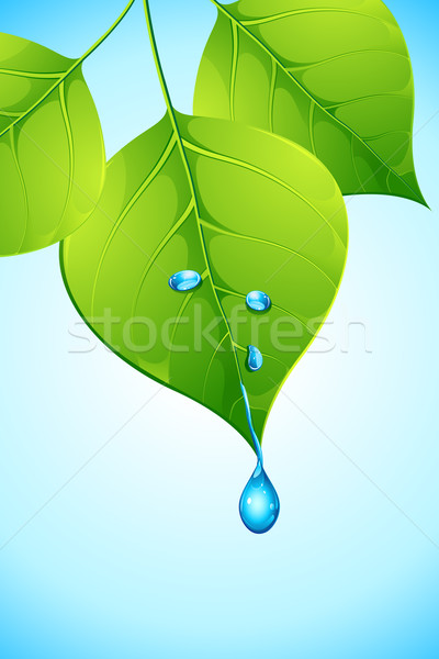 Water dropping from Leaf Stock photo © vectomart