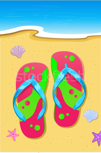 Pantoffel strand illustratie ontwerper star shell Stockfoto © vectomart