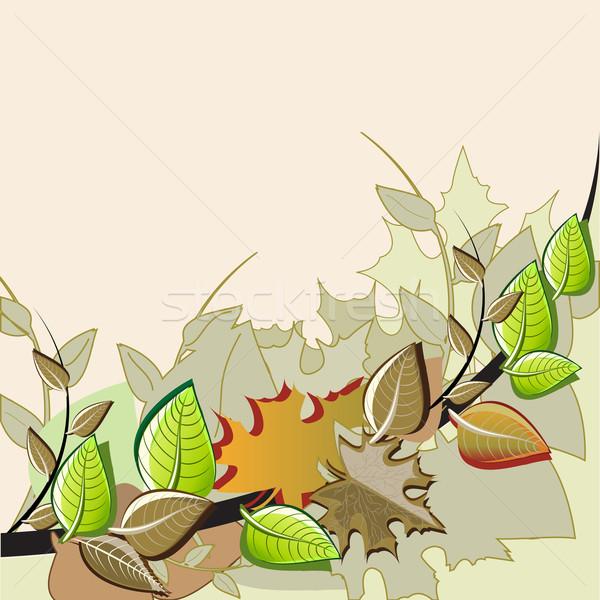 Autumn Tree Stock photo © vectomart