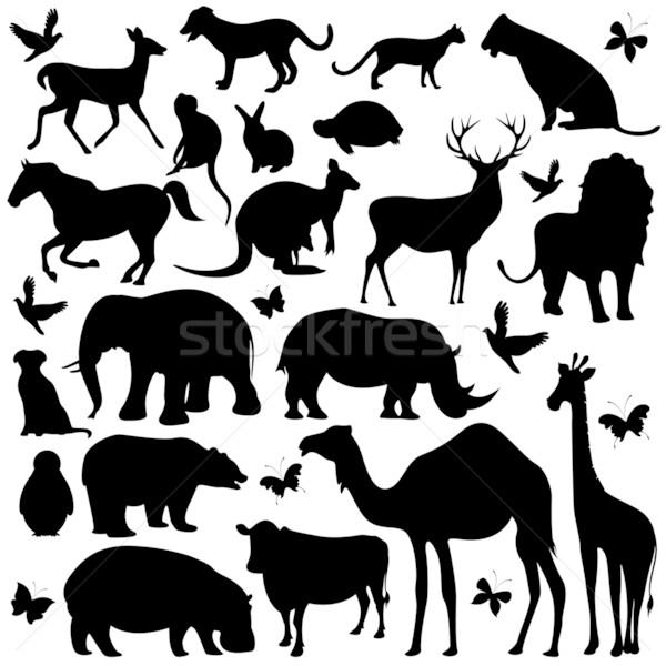 Animale sagome illustrazione raccolta isolato sfondo Foto d'archivio © vectomart