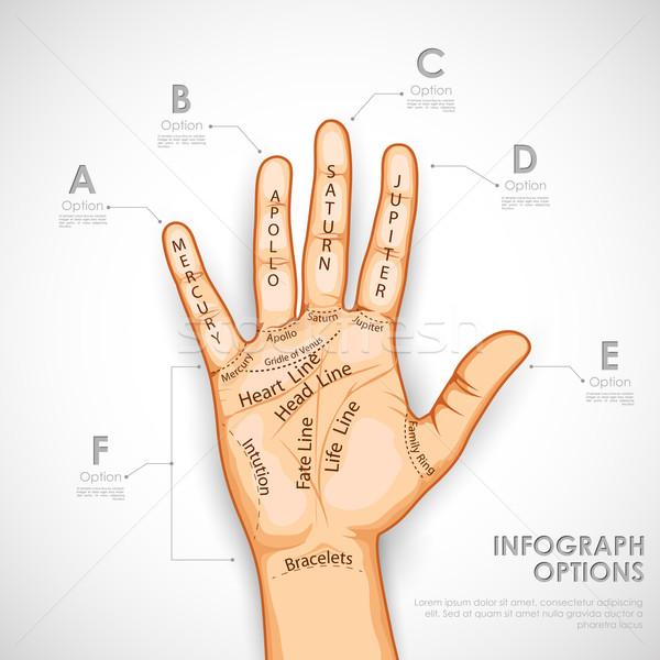 Palmistry Infographics Stock photo © vectomart