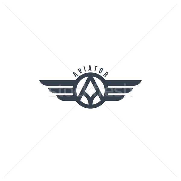 aviator wing theme Stock photo © vector1st