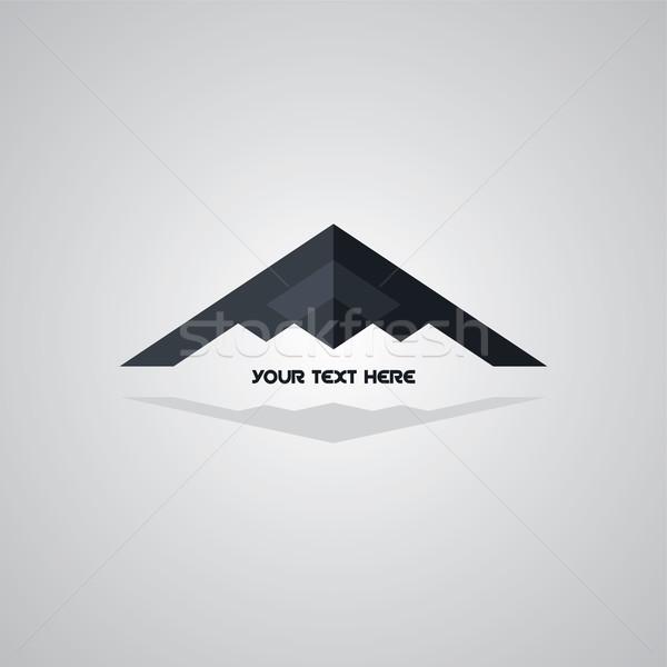 Lopakodó logo repülőgép repülőgép logotípus vektor Stock fotó © vector1st