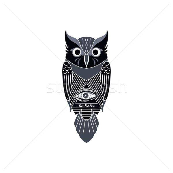 Dekoratif baykuş sanat kuş vektör örnek Stok fotoğraf © vector1st