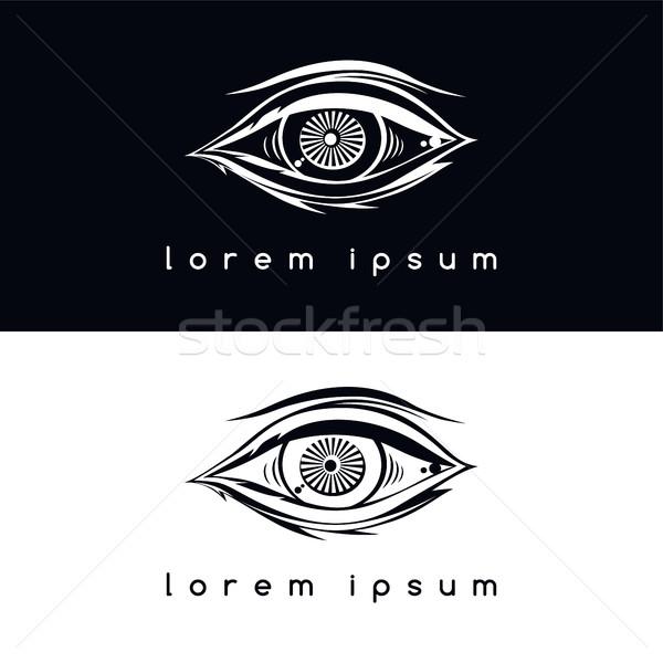 Göz vizyon vektör sanat örnek Stok fotoğraf © vector1st