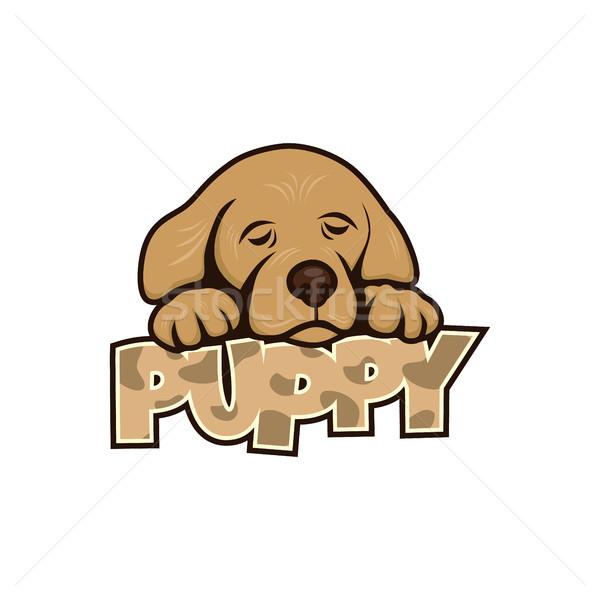 Foto stock: Bonitinho · pequeno · cachorro · vetor · arte · ilustração