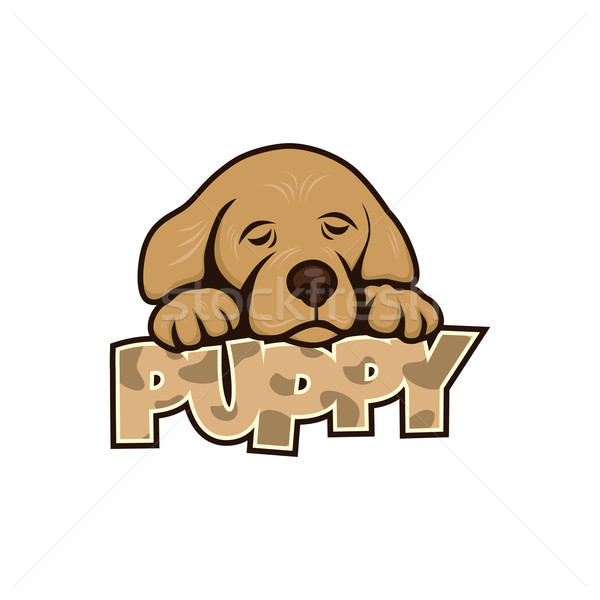 cute little puppy Stock photo © vector1st