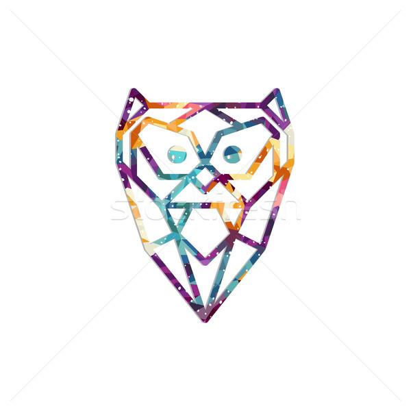 Színes bagoly madár vektor művészet illusztráció Stock fotó © vector1st