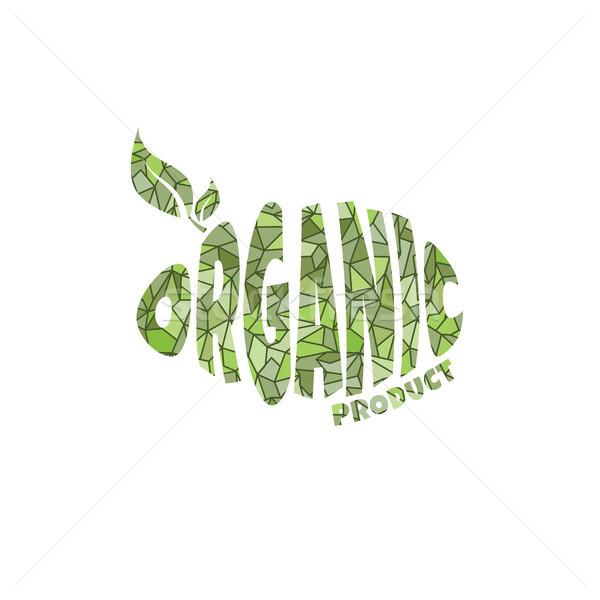 Környezetbarát természetes címke organikus termék matrica Stock fotó © vector1st