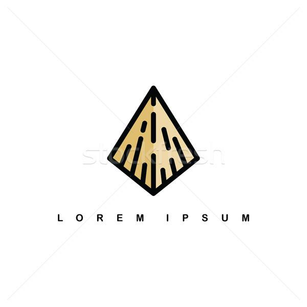 Isometrische piramide teken driehoek logo Stockfoto © vector1st