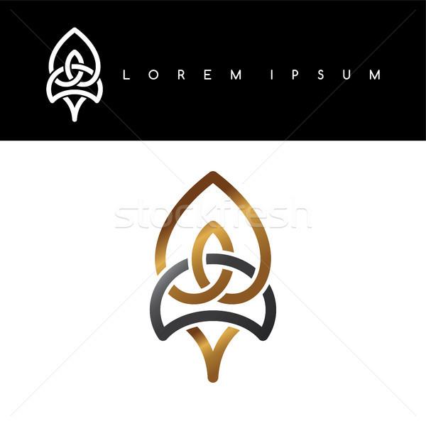 Virágmintás arany fekete absztrakt logo logotípus Stock fotó © vector1st