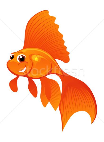 Glücklich Goldfisch lächelnd isoliert weiß Fisch Stock foto © vectorArta