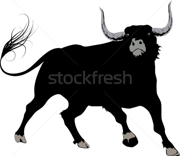 black bull Stock photo © vectorArta